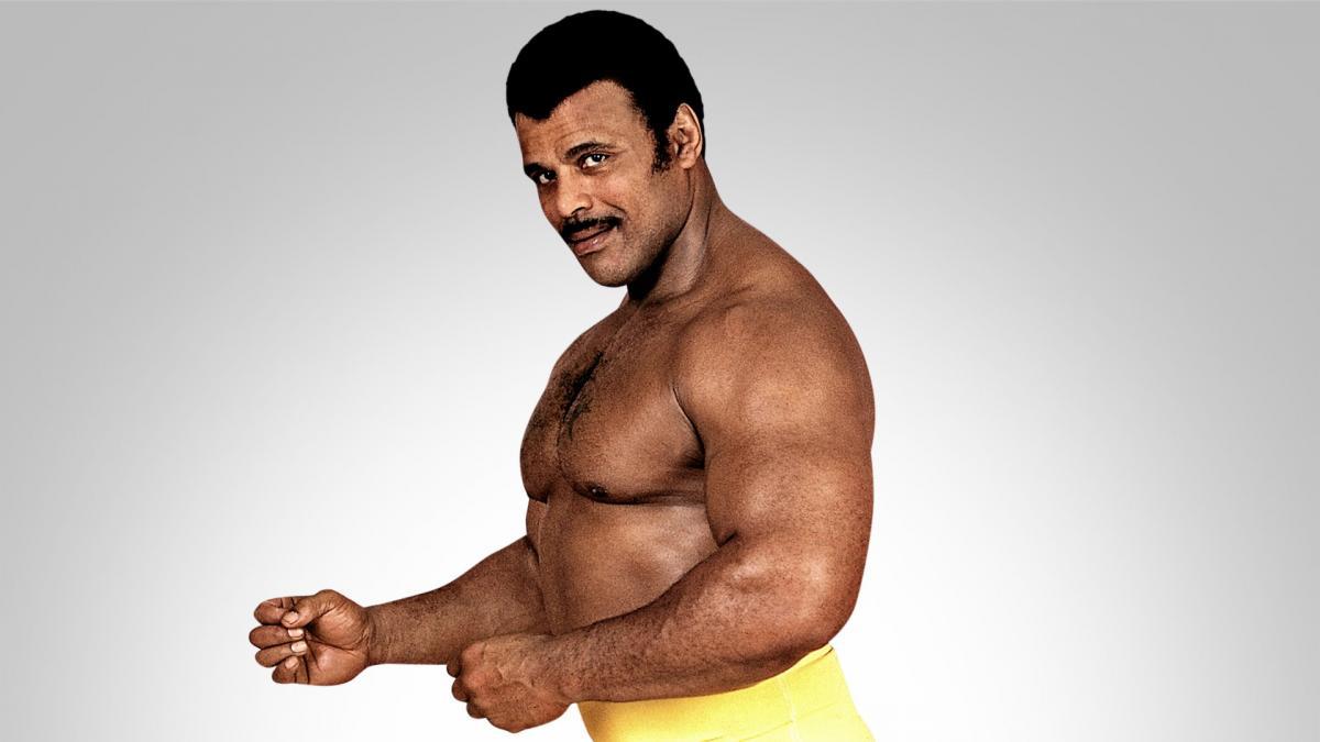 Quand Dwayne Johnson incarnait son père, Rocky Johnson, dans That '70s Show